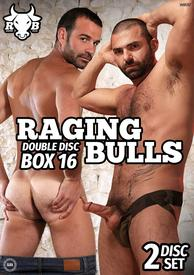 Raging Bulls Box 16 {dd}